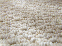 Carpet Warranties