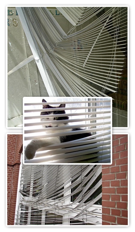 Repair Blinds